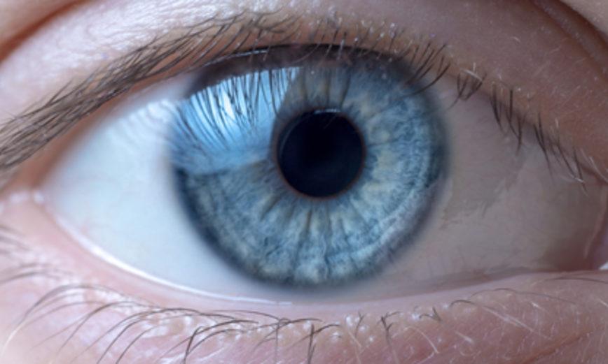 Santé de la vision